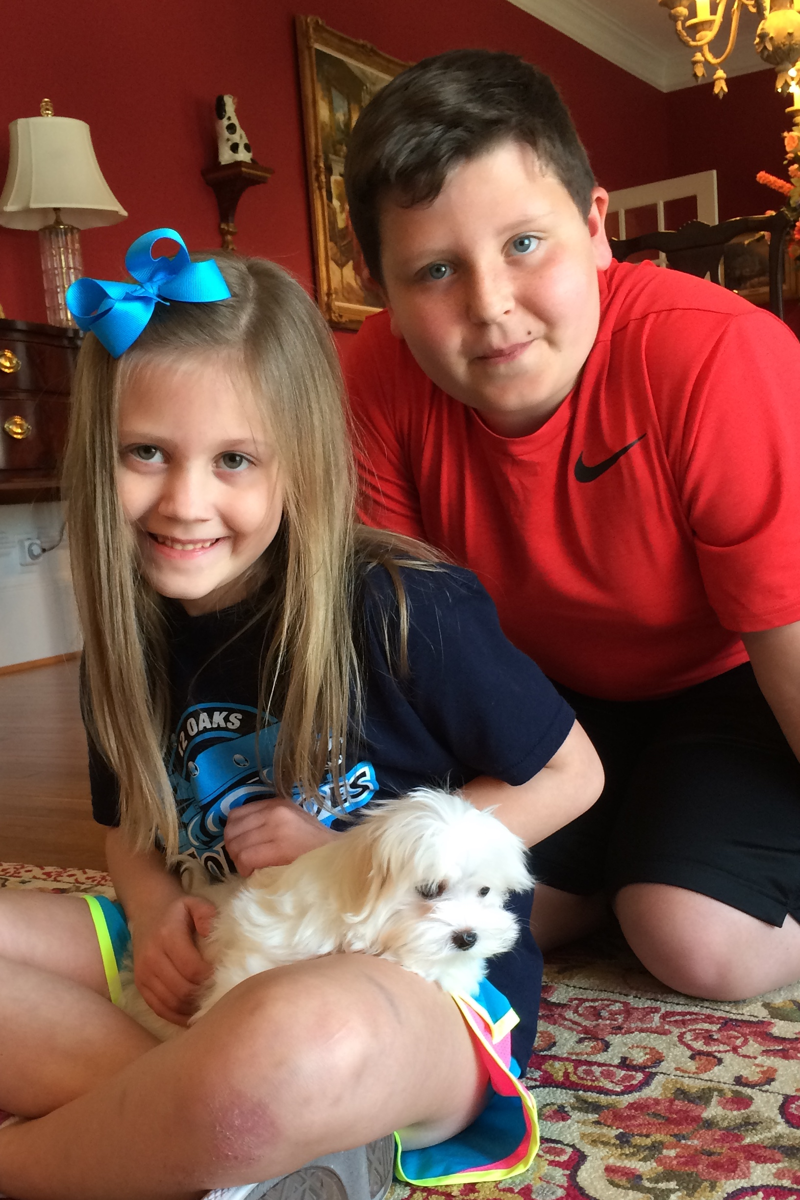 Link Family w/Cooper - Holly Springs, NC
